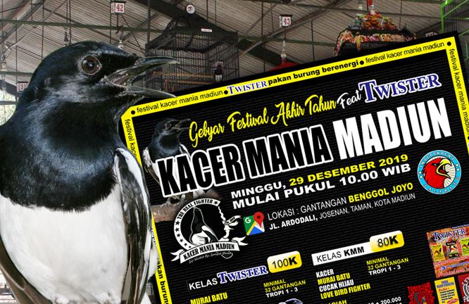 Jelang Tahun Baru 2020 Kacer Mania Madiun Kerja Bareng Twister Gelar Festival Bergengsi Burungnews